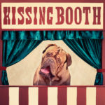 A french mastiff drolling in a kissing booth